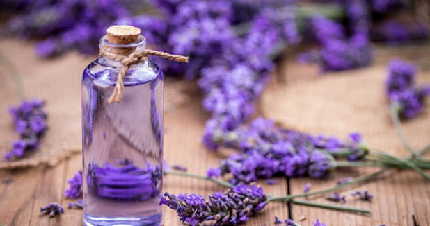 Wonderful Benefits of Lavender Essential Oil for skin care