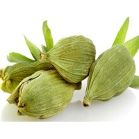 Organic Cardamom Essential Oil